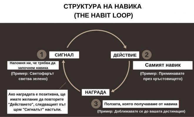 struktura-na-navika